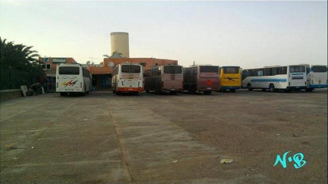 لتسهيل تنقل المسافرين خلال فترة عيد الأضحى.. وزارة النقل تضع إجراءات استثنائية