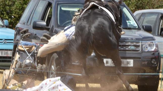 حصان هَائج يُرسل طفلا لمستعجلات بني ملال