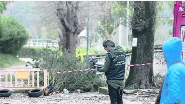 شجرة تقتل مهاجرا مغربيا بايطاليا والتحقيقات تجر أربعة مسؤولين للقضاء