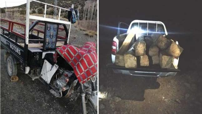 """تونفيت: السلطة المحلية ومصالح المياه والغابات تطارد """"مجرمي الأرز"""""""