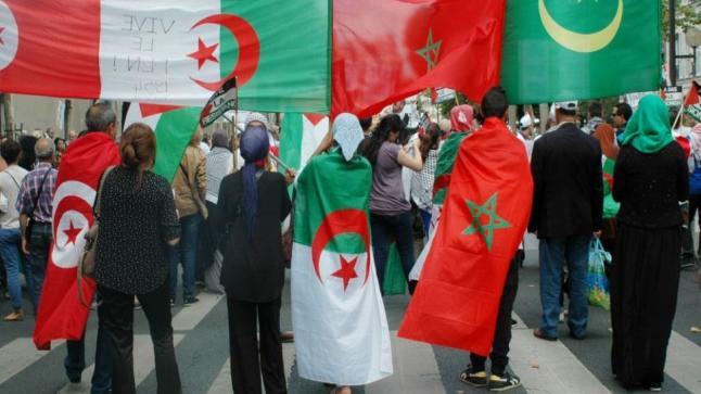 فرحة مغاربية بتأهل تونس والجزائر إلى نصف نهائي كأس أمم أفريقيا