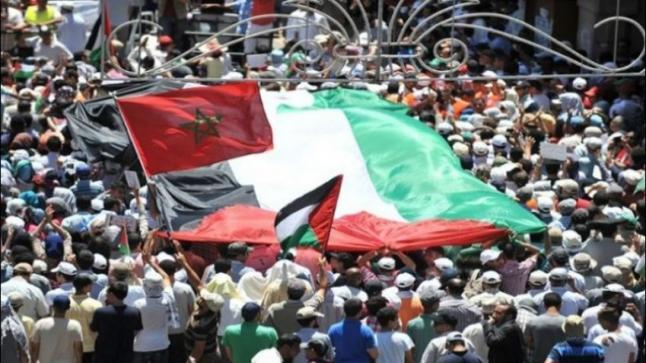 نزار بركة: القضية الفلسطينية قضية ملك وشعب بالنسبة للمغرب